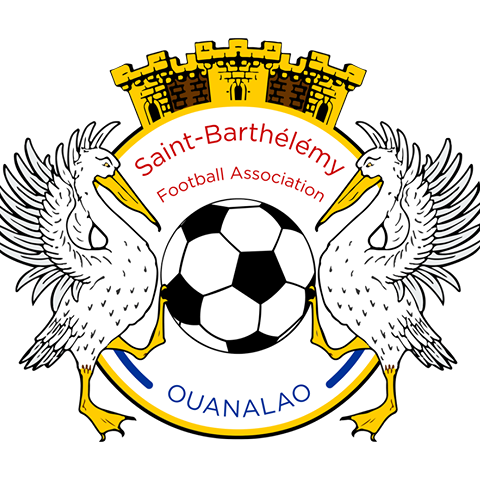 Remmedia-sponsorise-comite-territorial-football-saint-barthélémy